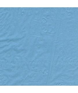 Drap d'examen bleu 50x38cm pure ouate